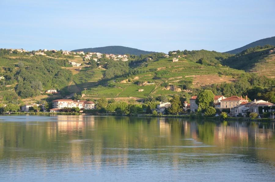 VINUM Northern-Rhône Photo by Richard Pearson @ flickr