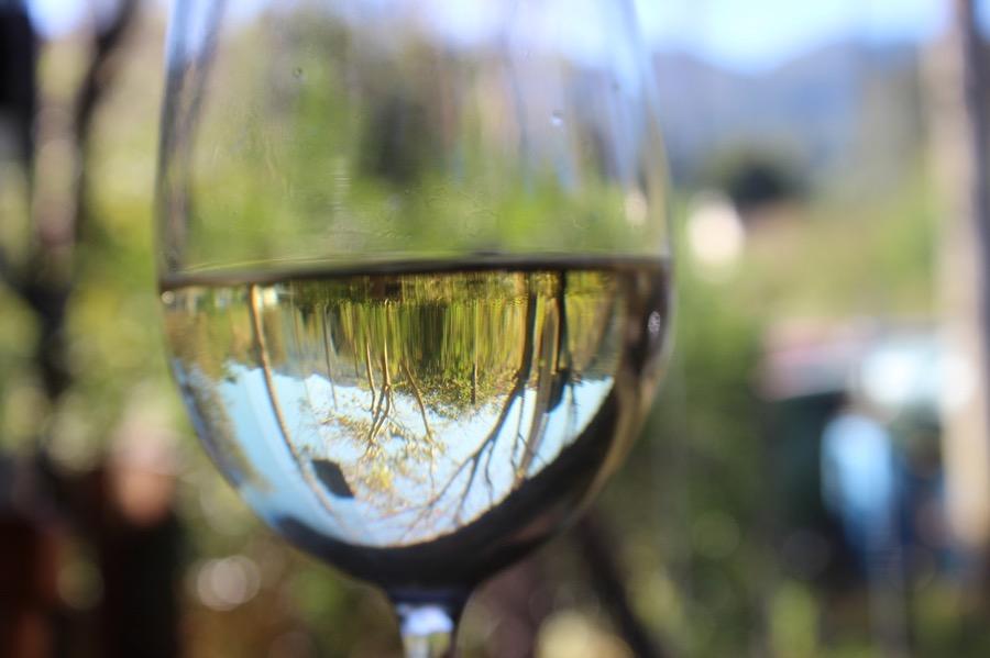 VINUM glass-close-up
