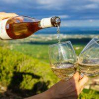 VINUM Pouring-wine