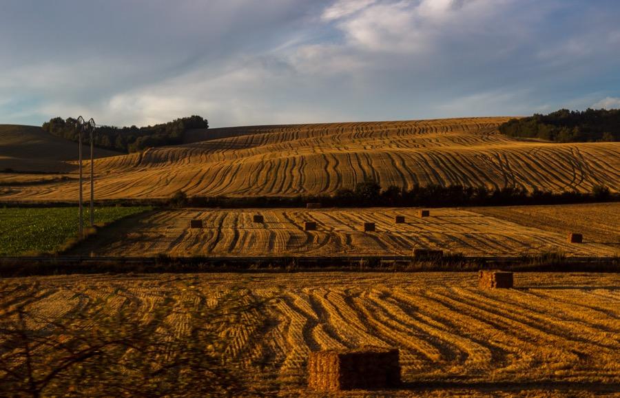 VINUM Basque-winery