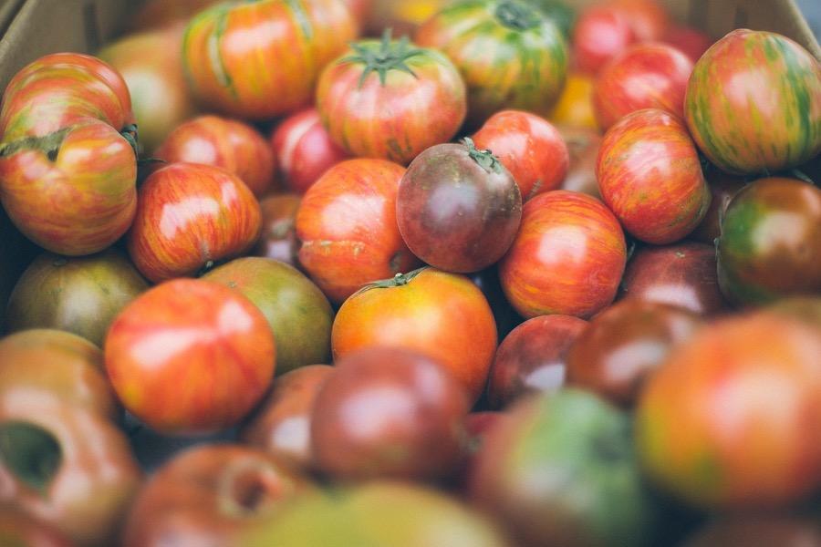 VINUM Red-green-tomato