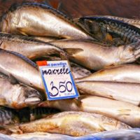 mackerel-in-market